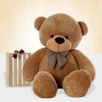2 Ft Teddy Bear (60 cm)